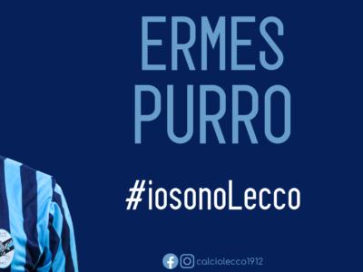 Purro_Ermes
